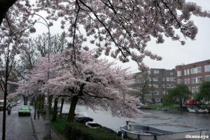 Amsterdam - Jozef Israëlskade